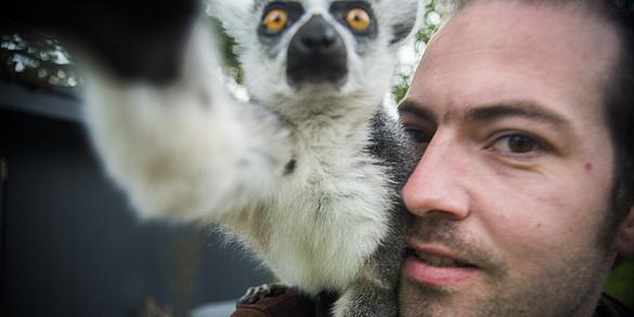 Fotoreportage in dierentuin